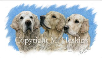 Jack, Newman and Barnaby