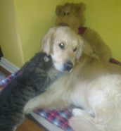Jeoffry and his favourite, barnaby