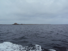 Lindisfarne in the distance